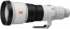 SONY 600mm f/4 GM OSS FE (New)